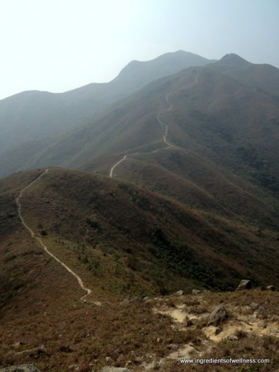 Tigers Head, Lantau